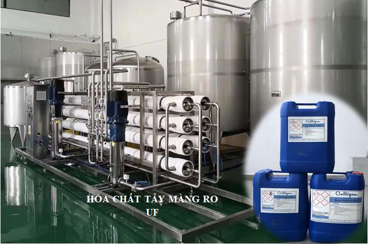 Chất tẩy rửa vệ sinh rong, tảo, vi khuẩn màng RO, UF Culligan 51M17